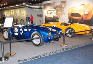 Short Car Museum Stanchions